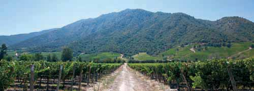 Villages & Vineyards of Argentina & Chile