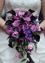 UW Wedding Fair