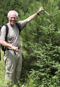 Tom Hinckley indicates new growth in a naturally regenerated spruce tree, Sichuan Province, China. 