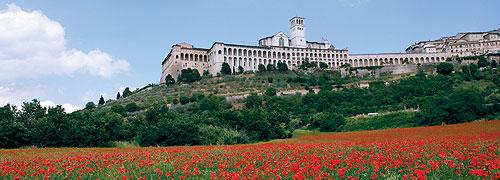 Cortona: Alumni Campus Abroad