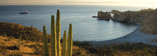 Pre-Hispanic Art, Missions & Wildlife of the Sea of Cortez