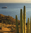 Baja Peninsula & the Sea of Cortez