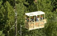 Wind River Canopy Crane