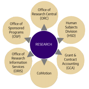 "Graphic displaying the following units outlined below circled around ""research""."