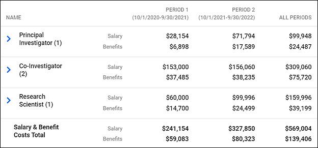 summary salary totals