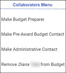 budget settings for access promotion