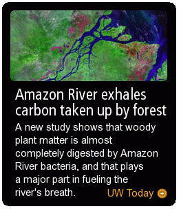 Amazon River exhales carbon taken up by forest
