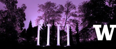 Sylvan Grove columns in purple