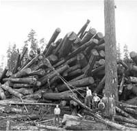 Logging Crew
