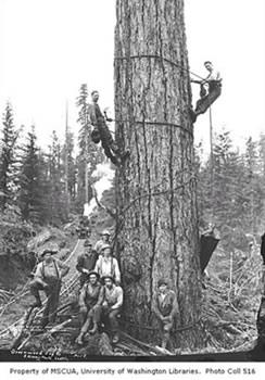 High rigging crew