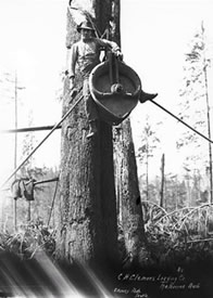 Logger on heavy rigging block