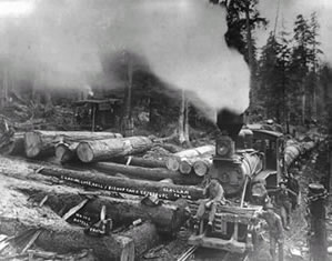 Hall and Bishop Logging Company Operations