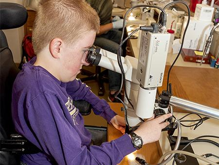 A student reviews a specimen through a microscope.