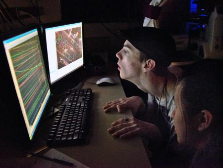Image of a student looking at a computer screen during a lab.