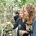 A student signs to another student as they view plants in a greenhouse.