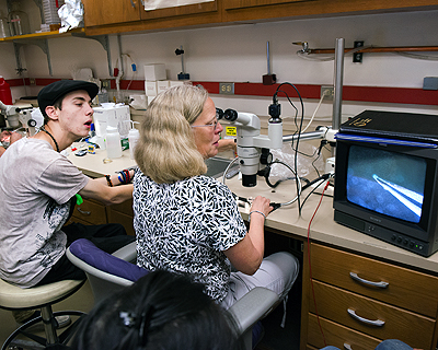 Image of an instructor demonstrating how to use a digital microscope