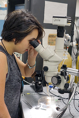 Phase 2 Scholar Naomi looks at a cockroach leg under a microscope during Summer Study 2017.