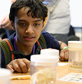 A student examines brains in jars.