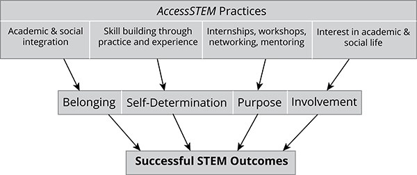 Successful STEM Outcomes chart
