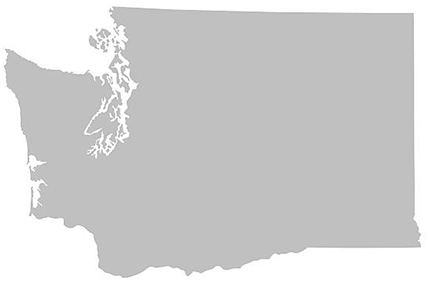 An outline of Washington State.