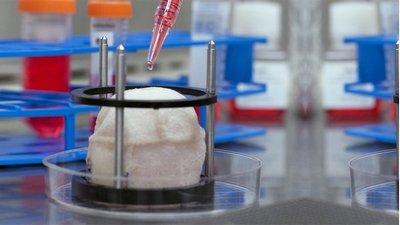 Regenerative medicine pioneer Atala to give Rushmer Lecture