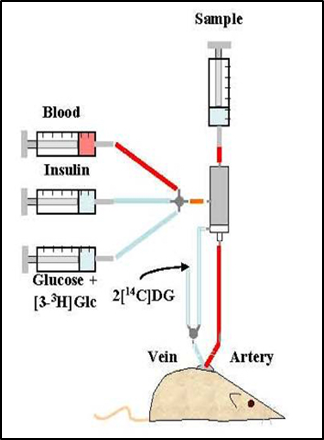 UW Cell Function Analysis Core image