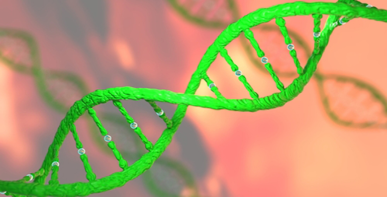 green DNA strand on a orange pink background