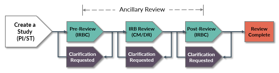 ancillary review diagram