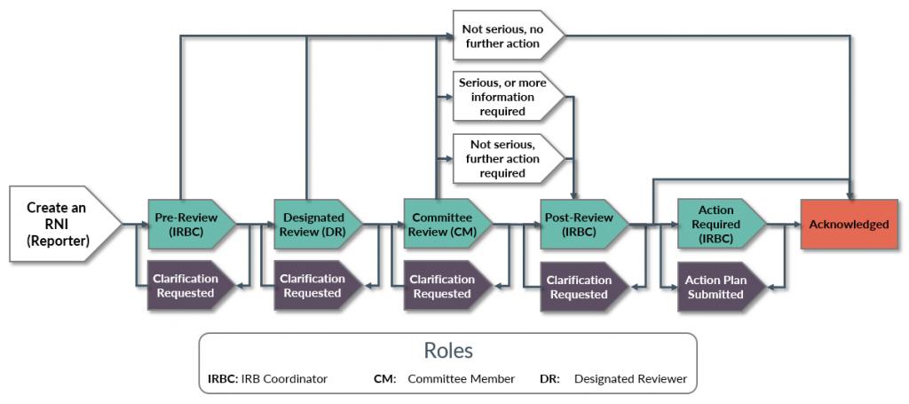 RNI review diagram